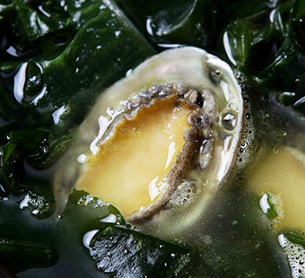 Seaweed Soup with Abalone